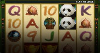 gclub slot panda